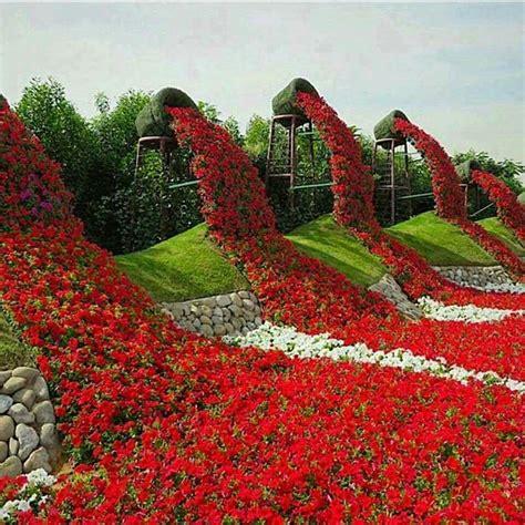 Garden Decoration Dubai miracle garden dubai jardin decoration jardin fleur