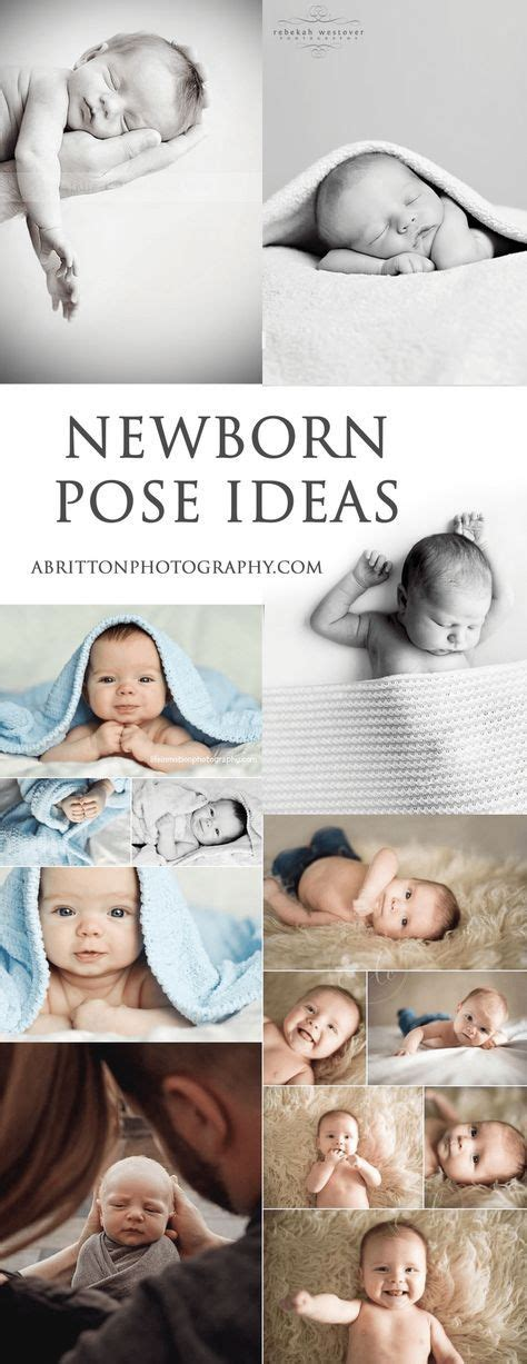 trend  newborn photography ideas tips  poses