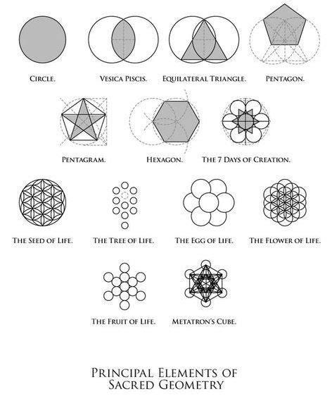 symbolism flower  life body ink sacred geometry