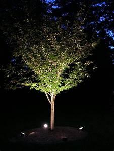 Outdoor landscape lighting for trees izvipi