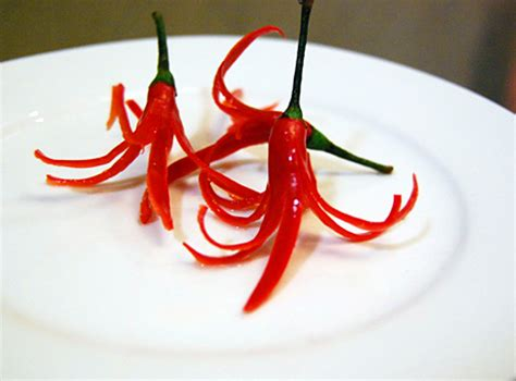 Kitchen Plan Ideas - how to chili flower garnishes appetite for china