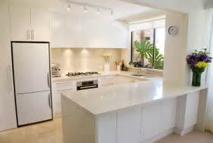 custom kitchen design ideas contemporary custom kitchens with ideal storage cabinets motiq home decorating ideas