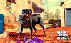 Gta 5 With Dog Wallpaper Hd | Free High Definition Wallpapers