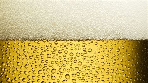 beer wallpapers images  pictures backgrounds