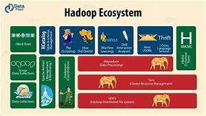 What Is A Hadoop Ecosystem