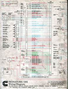 Freightliner Truck Wiring Diagrams  Engine  Wiring Diagram