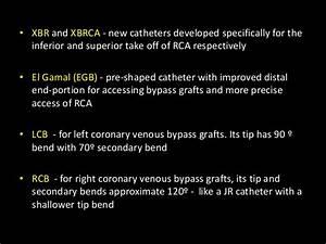 Lcb Guide Catheter