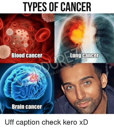 Brain Cancer Meme - types of cancer lung cancer blood cancer brain cancer uff caption check kero xd meme on sizzle
