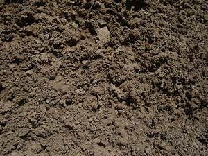 Loam Topsoil – Haluchs Landscaping Products