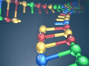 Why Is Dna Replication Important