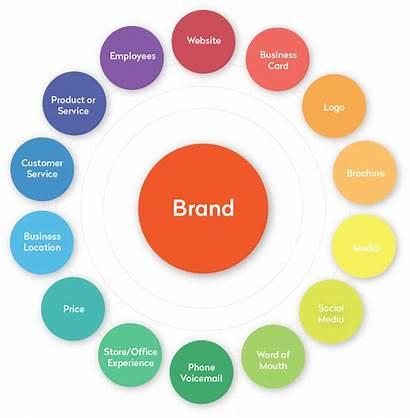 Development Branding Circle Example Marque Fin Marketing