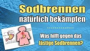 Was Hilft Gegen Wühlmäuse : was hilft gegen sodbrennen youtube ~ Lizthompson.info Haus und Dekorationen