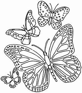 Dessin Facile Papillon : mandalas papillon 18 mandalas coloriages imprimer ~ Melissatoandfro.com Idées de Décoration