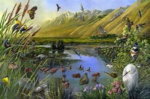 Poster Mural Nature : the nature conservancy murals the art of larry eifert ~ Teatrodelosmanantiales.com Idées de Décoration