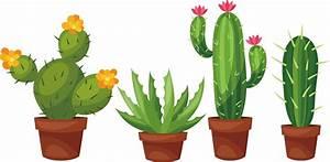 Pot De Fleur Transparent : succulent flower vector black and white download techflourish collections ~ Teatrodelosmanantiales.com Idées de Décoration