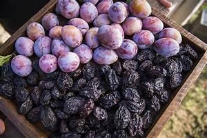 supply procurement california prunes prunes for