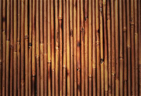bamboo texture wallpaper  offices wall decor