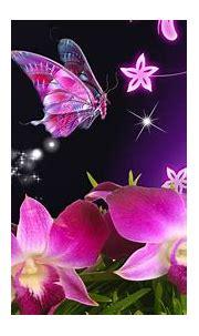 butterfly wallpaper free download mobile - HD Desktop ...
