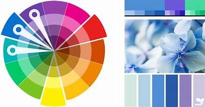 Colour Scheme Analogous Harmonies Theory Properties Schemes