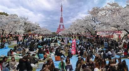 Tokyo Paris Hanami Tamago Spoon Blossom Japanese