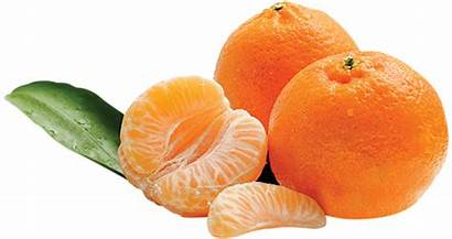 Easy Peelers Citrus South Organic Kg Right