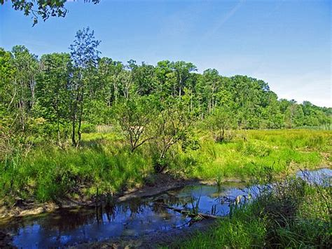 7 best images about pete s pond preserve on pinterest to