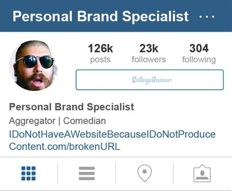 instagram bios  exist chaostrophic