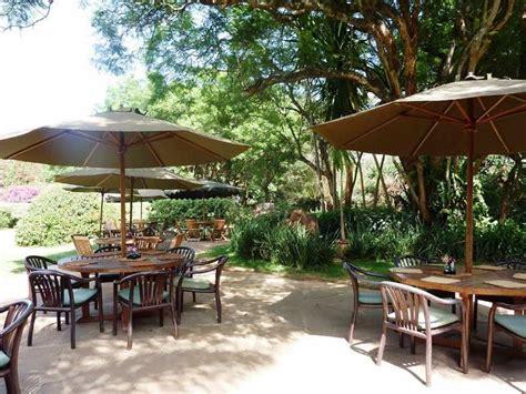 Coffee grounds can be an amazing free resource providing many benefits to your garden. Karen Blixen Coffee Garden
