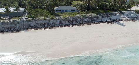 bedroom beachfront home  sale scotland cay abaco