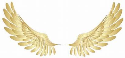 Angels Golden Artikel Young
