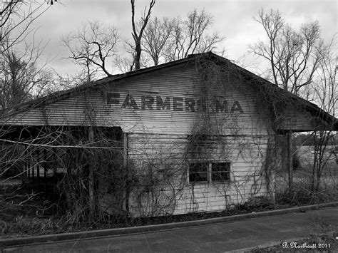 farmer s market shed by betty northcutt