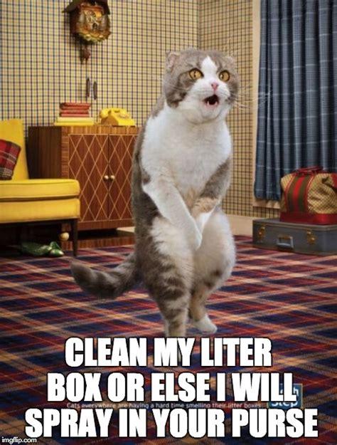 cat gotta go meme else clean memes funny pee animal spray expressions evil imgflip english popular evilenglish