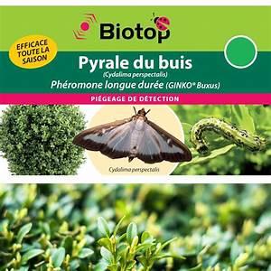 Pyrale Du Buis Traitement Bio : ph romone pyrale du buis longue duree 1 capsule traitement pyrale du buis ~ Melissatoandfro.com Idées de Décoration