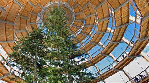 Tree Tower Bing Wallpaper Download