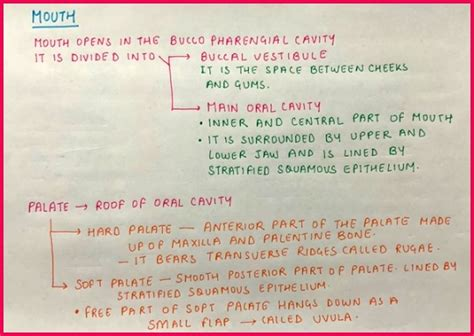 class  notes computer science central processing unit