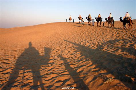thar desert location thar desert desert between pakistan india xcitefun net