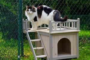 Maison Pour Chat Extérieur : maison pour chat exterieur ~ Premium-room.com Idées de Décoration