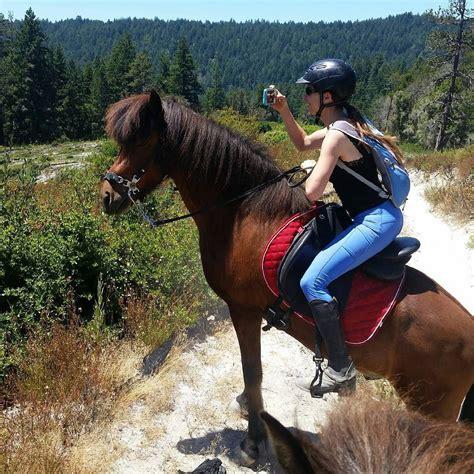 horze monterey bay horse hashtag into horses