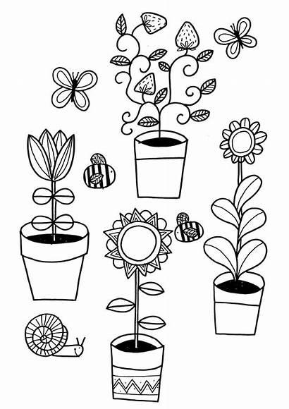 Coloring Colouring Garden Plants Plant Grow Gardening