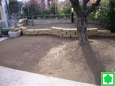 semina tappeto erboso semina di prati erbosi o posa tappetto a rotoli