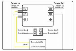 32 Orbit Pump Start Relay Wiring Diagram