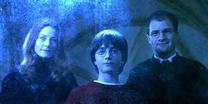 Harry Potter: 15 Things You Didn't Know About James And ...