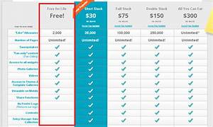 saas pricing model template - top 5 pricing strategies for subscription businesses