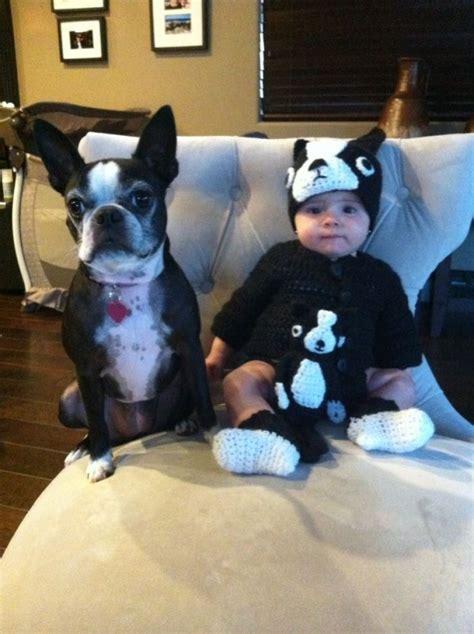 encantadores disfraces  tu bebe  tu perro