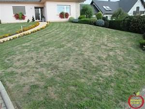 Refaire Son Jardin : refaire son gazon ou sa pelouse ma passion du verger ~ Nature-et-papiers.com Idées de Décoration