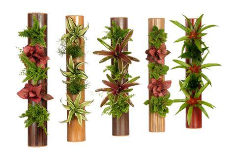 cadre mural vegetal sofag