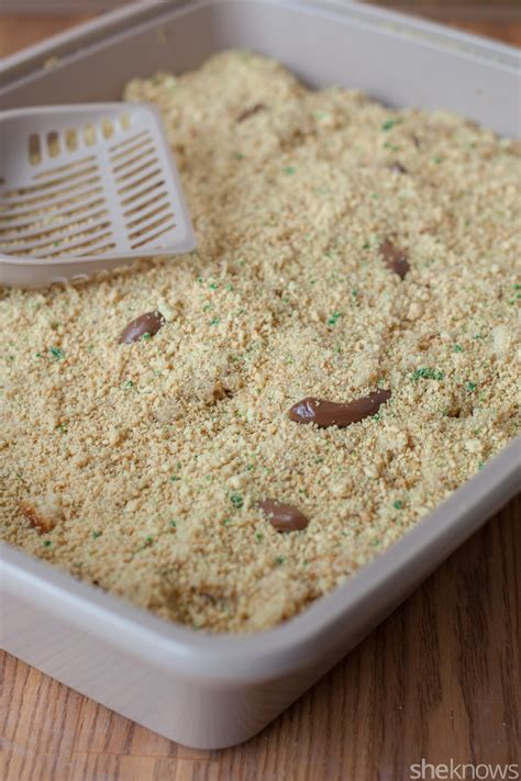 litter box cake kitty litter cake is the april fools day prank your