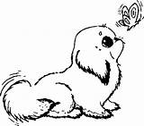 Prairie Dog Coloring Pages Drawing sketch template