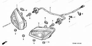 34 2005 Honda Rancher 350 Parts Diagram