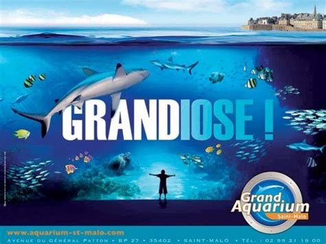 le grand aquarium de malo